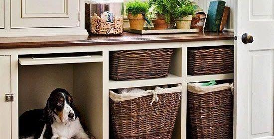 Cantinho do Pet pode fazer parte da decoração