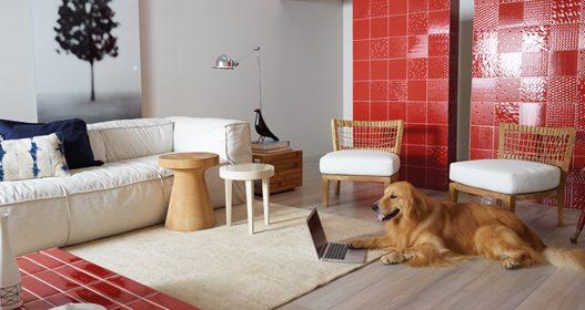 Qual o piso correto para cães e gatos? Descubra agora