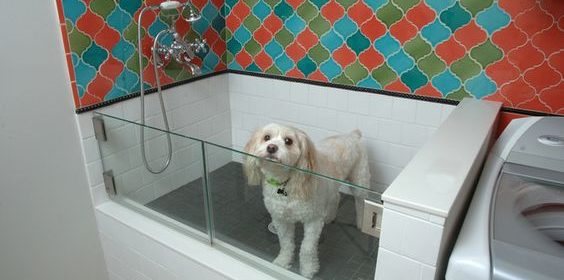 Banheiro do pet pode estar integrado à decoração da casa; veja dicas