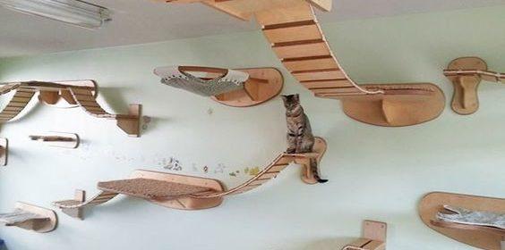 Brinquedos para gatos podem ser incorporados à decoração